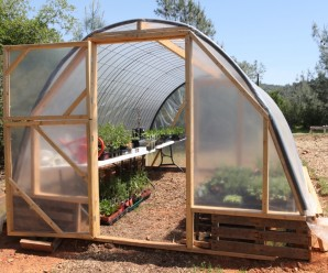 cattle-panel-greenhouse-front