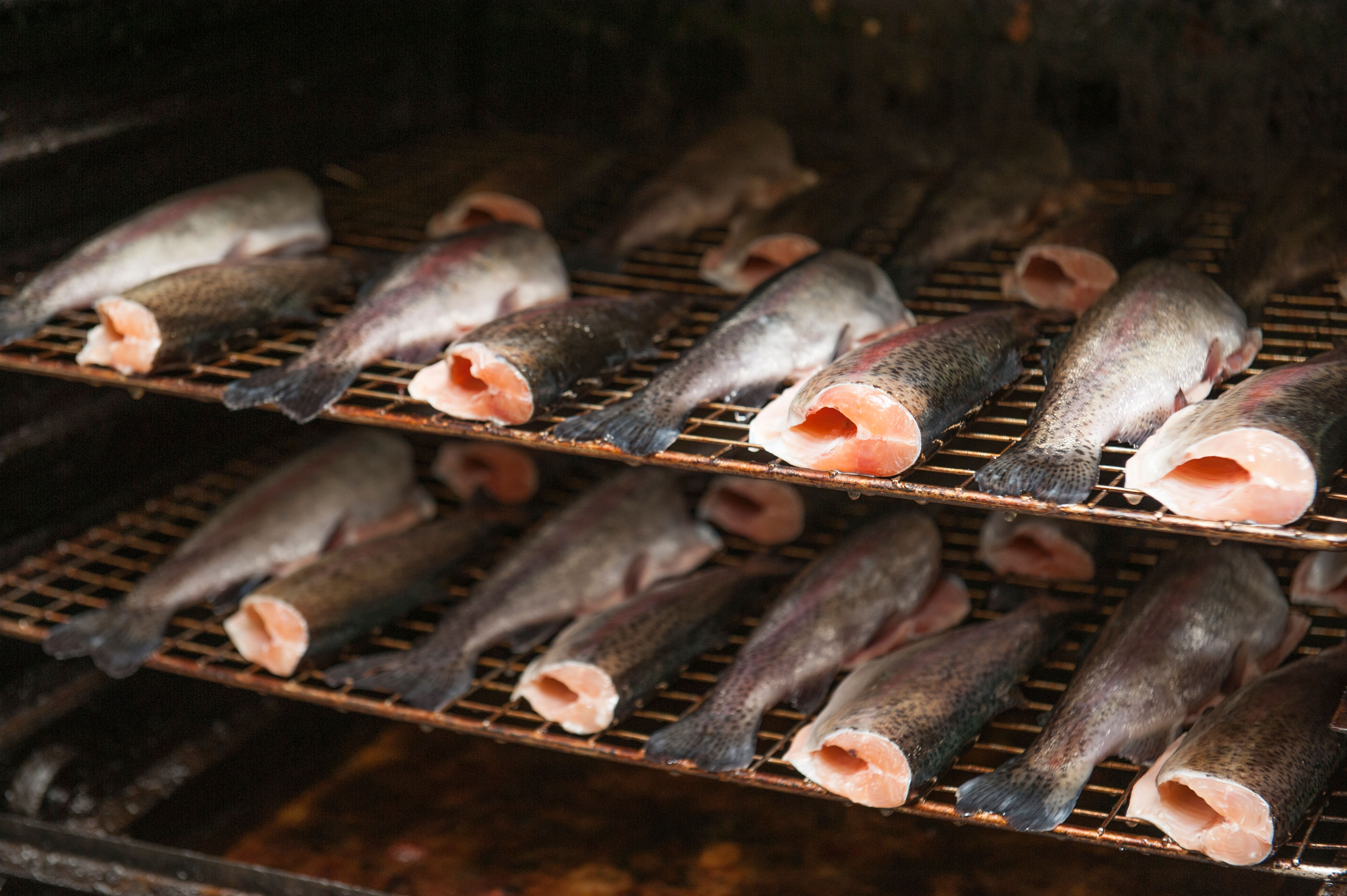 Fish and long term food storage for Smoking fish in a smoker