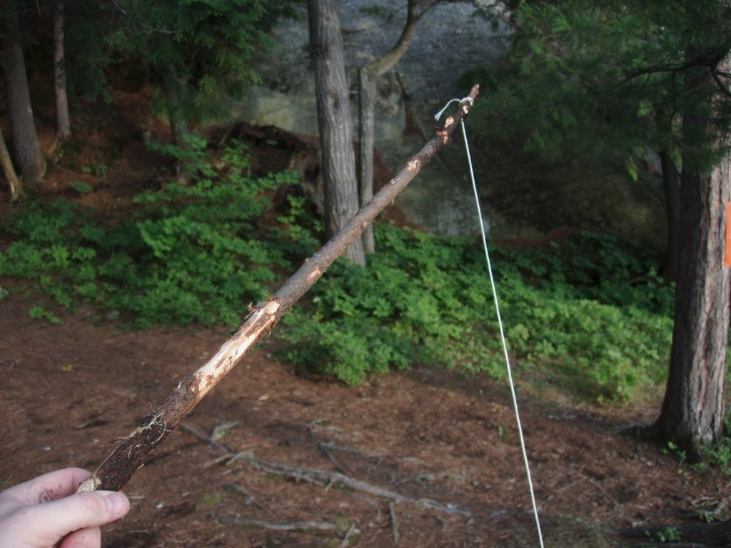 How to make fishing rods in the wild for How to make a fishing rod